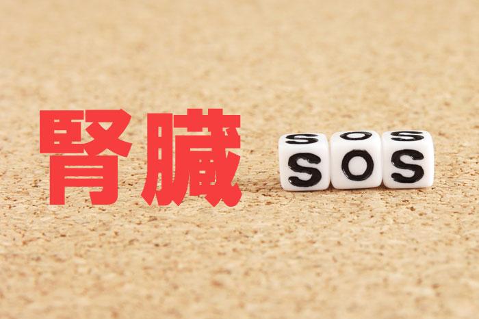 腎臓からの白髪SOS?